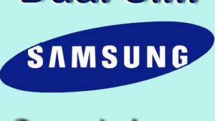 Dual Sim Samsung Smartphone