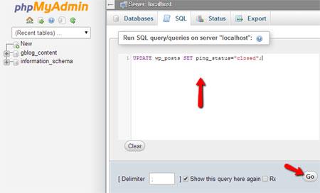 Run the SQL Query