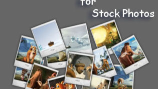 Best Deal For Stock Photos