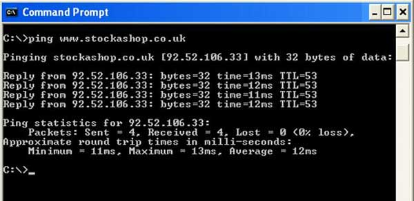 Ping Command Linux