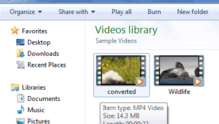 VLC converted video format
