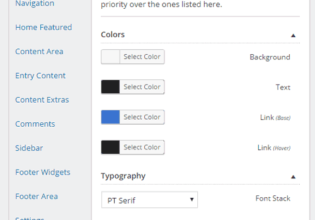 Design Palette Pro Review: Genesis Child Theme Customization Made Easy